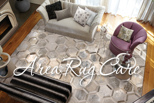 Area Rug Care - Nourison Area Rug, CTY01, SIL 6x8